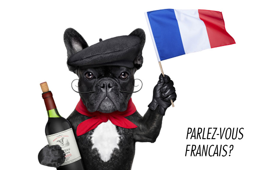 How to tell you are a French Bulldog owner 6