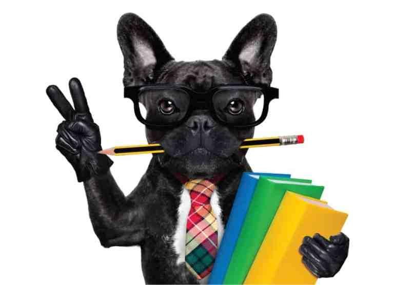 french bulldogs smart pen