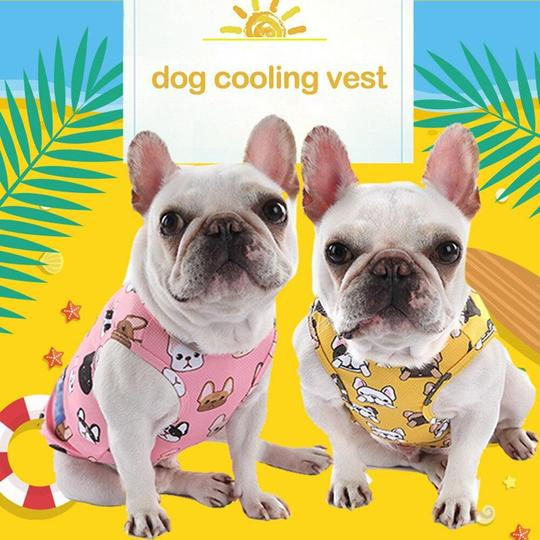 french bulldog cooling vest