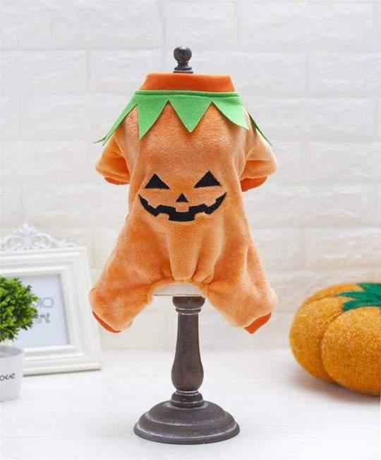 french bulldog halloween costumes